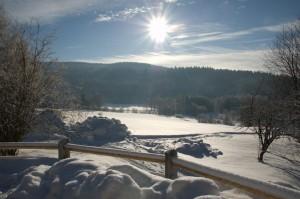 Winter im Landhotel Bayerwald